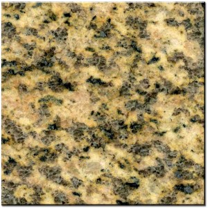 -Tiger_Skin_Yellow_Granite-300x300 (1)